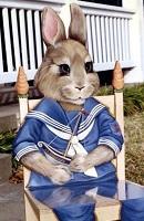 56 Felix bunny thumbnail