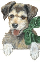 15 Molly dog thumbnail