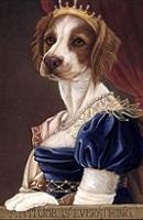 18 Countess de Canis thumbnail