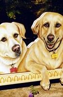 25 Two Labradors thumbnail